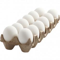 White Egg 12 Pcs